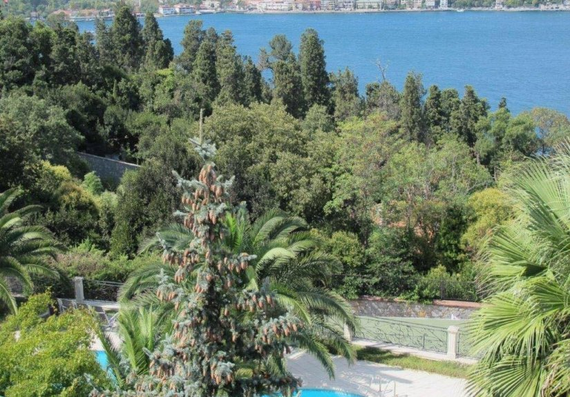7+4 mansion with magnificent Bosphorus View - 11