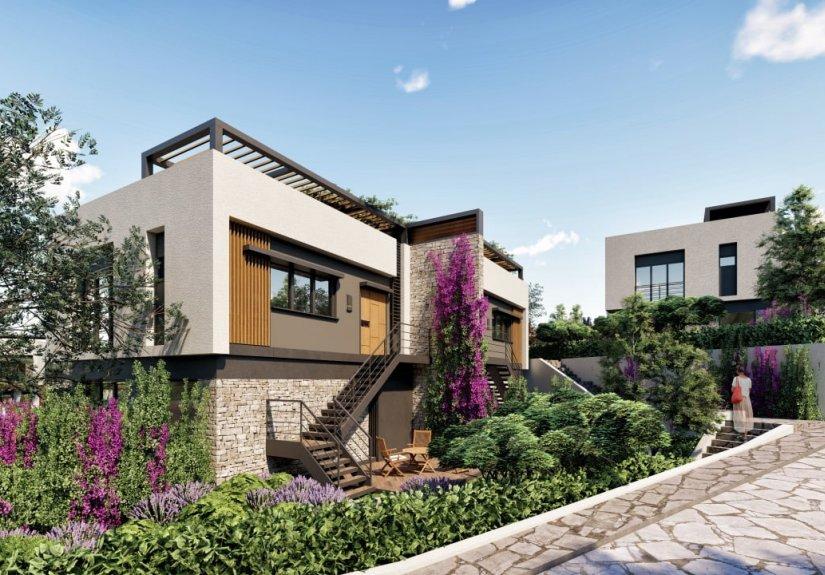 Lilac Houses - 1