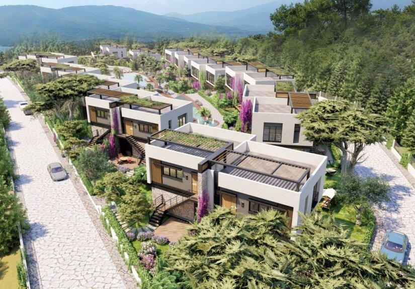 Lilac Houses - 10