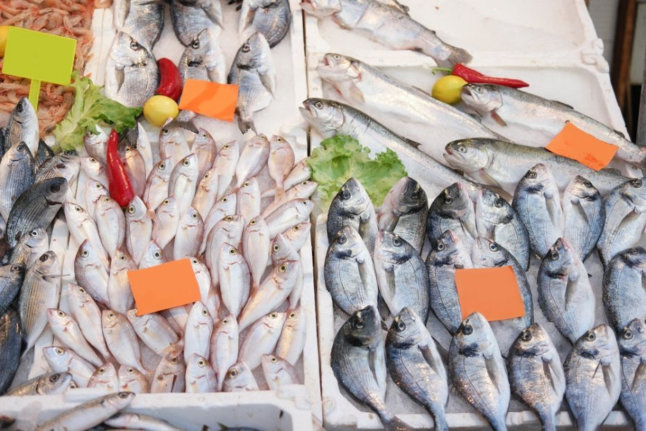 Gurpinar Water Products Market and Fishing Port