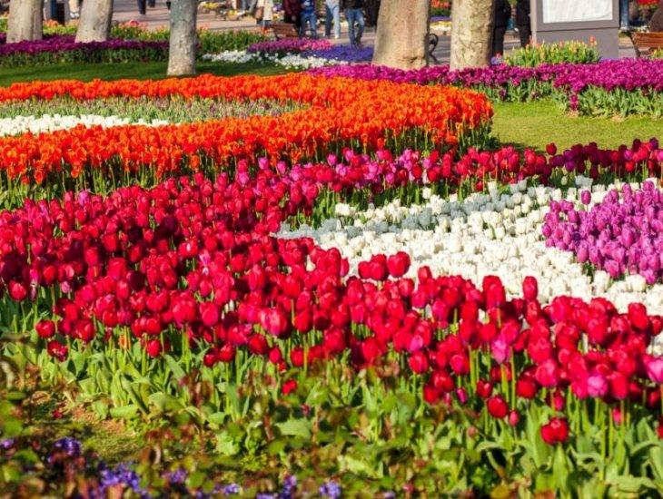 इस्तांबुल के करामाती पार्क