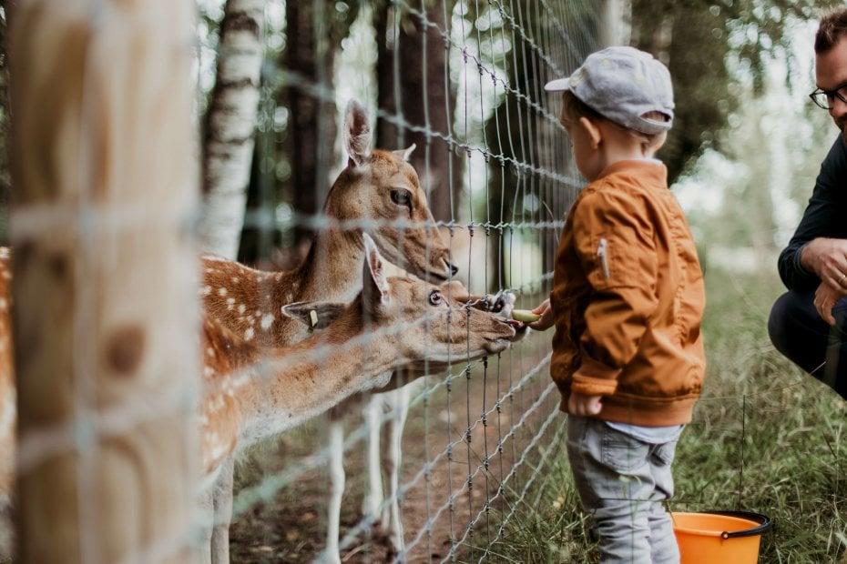 Zoos and Aquariums in Turkey